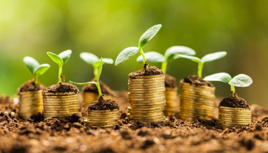 Governo trabalha em proposta de revisão de taxa ambiental