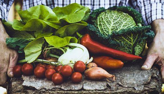 Deputado cobra isonomia na aquisição de alimentos do PNAE
