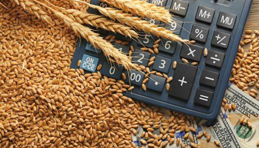 Relatório da Previdência acaba com imunidade sobre exportações agropecuárias