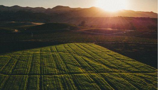 Agricultura aprova investigação sobre passivo do Funrural