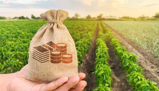 Comissão de Agricultura vai discutir novo modelo de financiamento do BNDES para produtores rurais